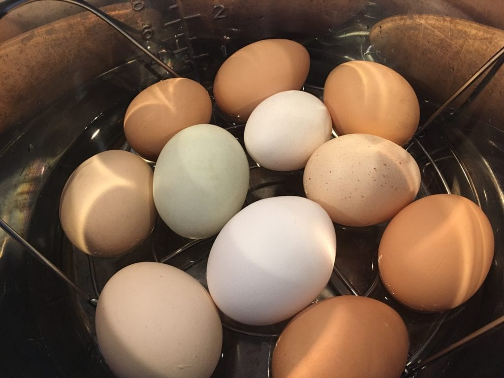 eggs in instant pot